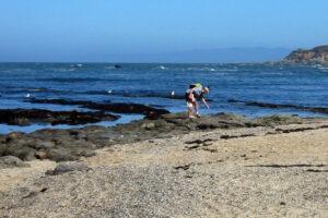 Fitzgerald Marine Reserve in Moss Beach