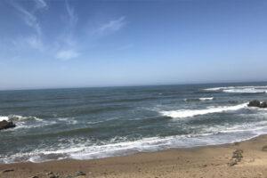 Bean Hollow State Beach & Pebble Beach