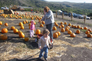 Tunitas Creek Family Farm