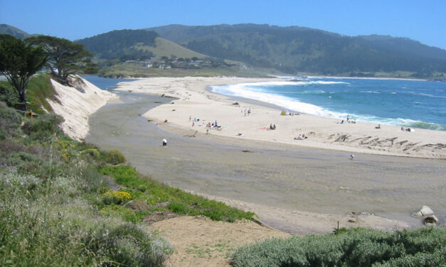 Monterey Parks, Beaches and Nature Preserves